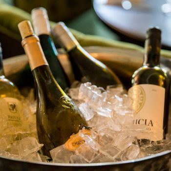 bottles of wine sit in a bucket of ice