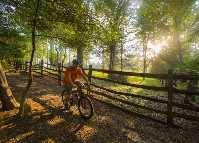 Man riding bike on nature trail in Colonial Williamsburg