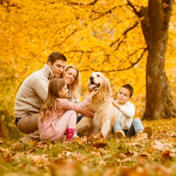 Family of four and their dog walking in autumn park together.