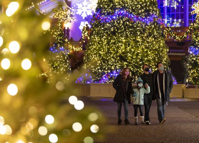 family looking at Christmas lights in Busch Gardens